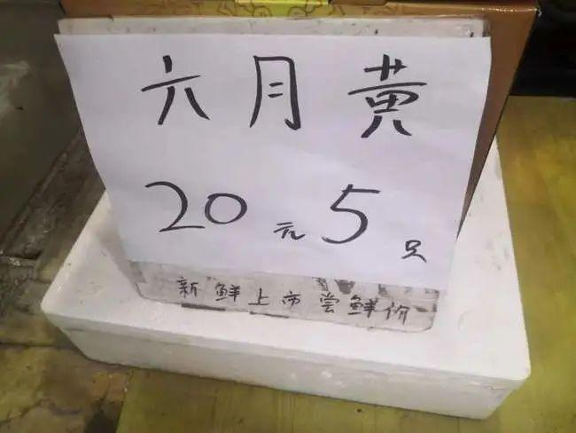 雷火电竞网站_雷火电竞亚洲_雷火电竞官网